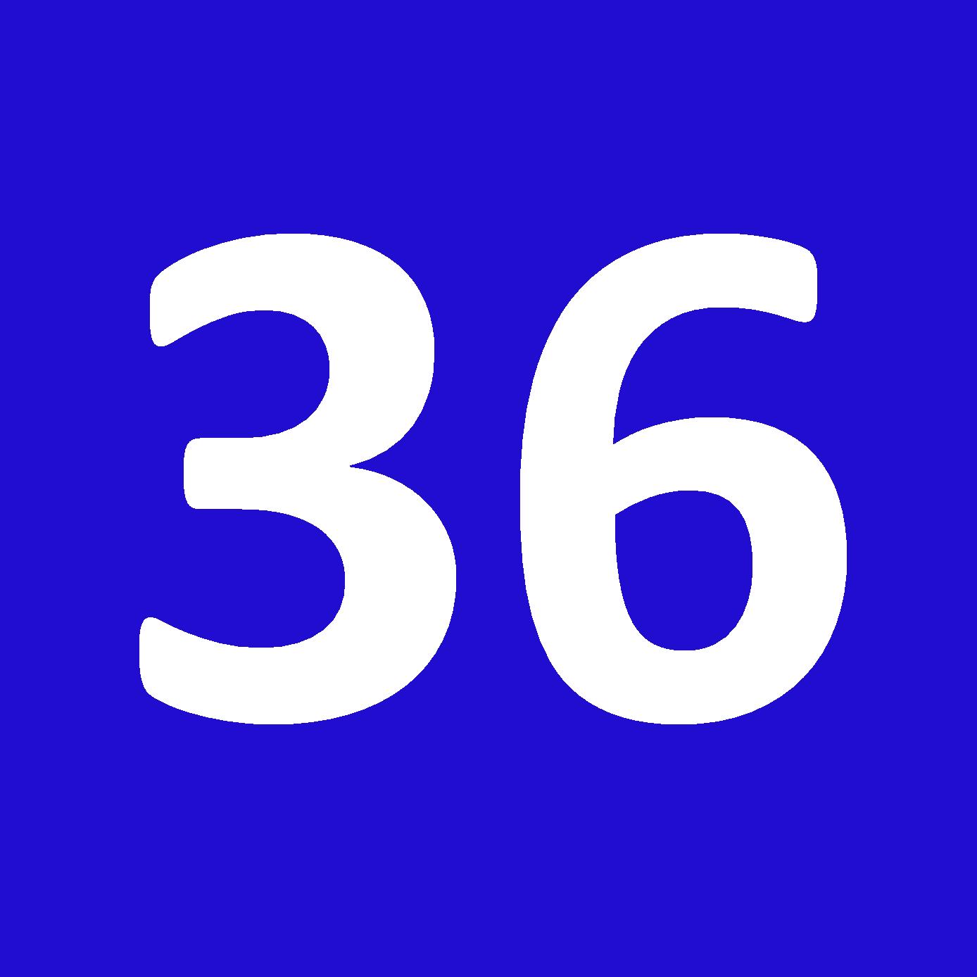 Tamanho 36