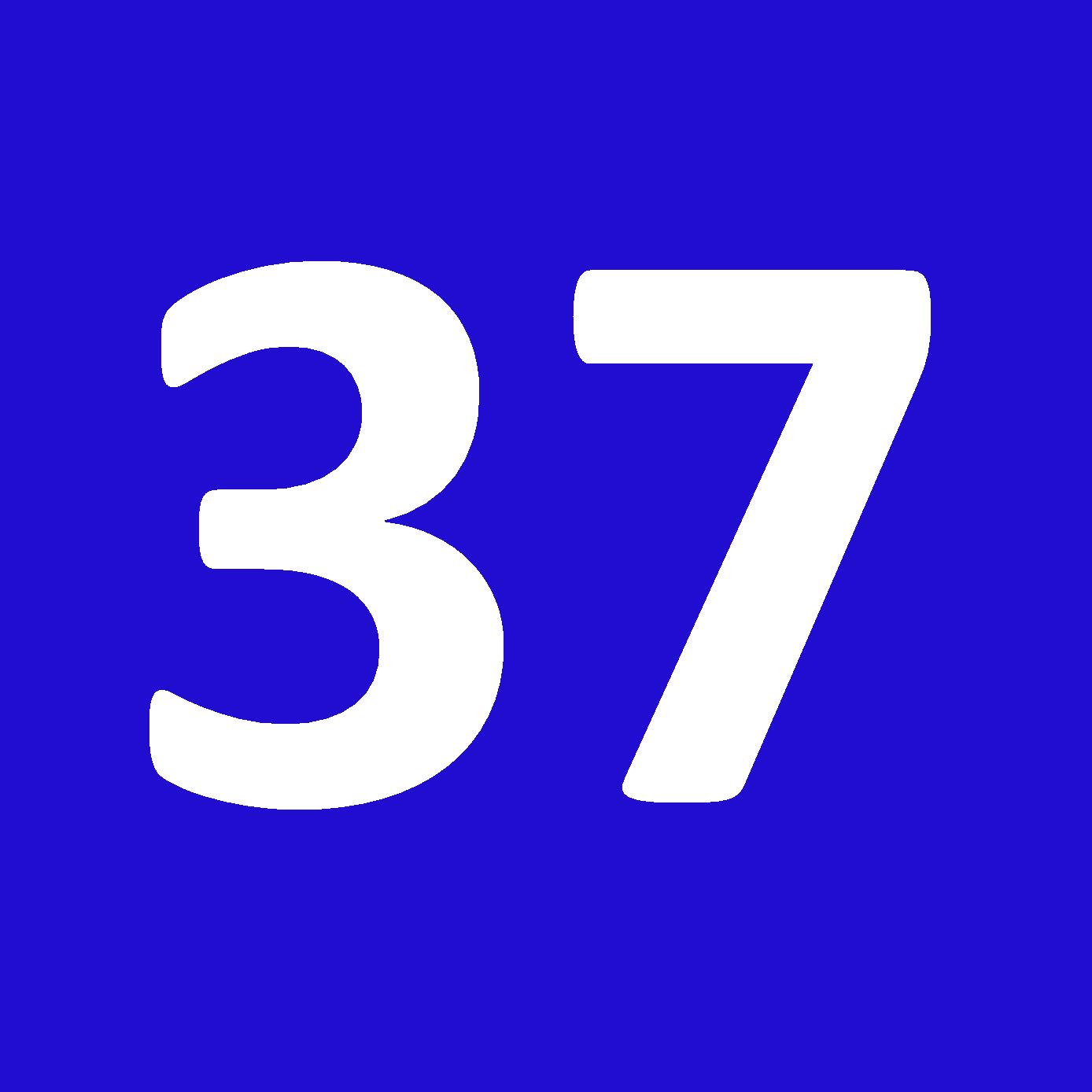 Tamanho 37