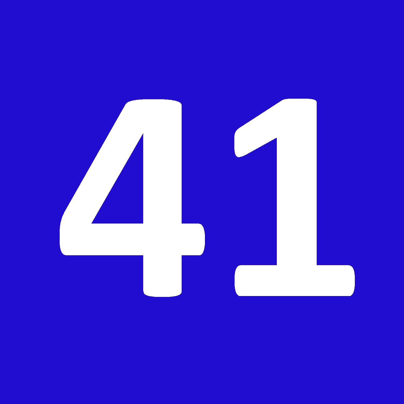 Tamanho 41