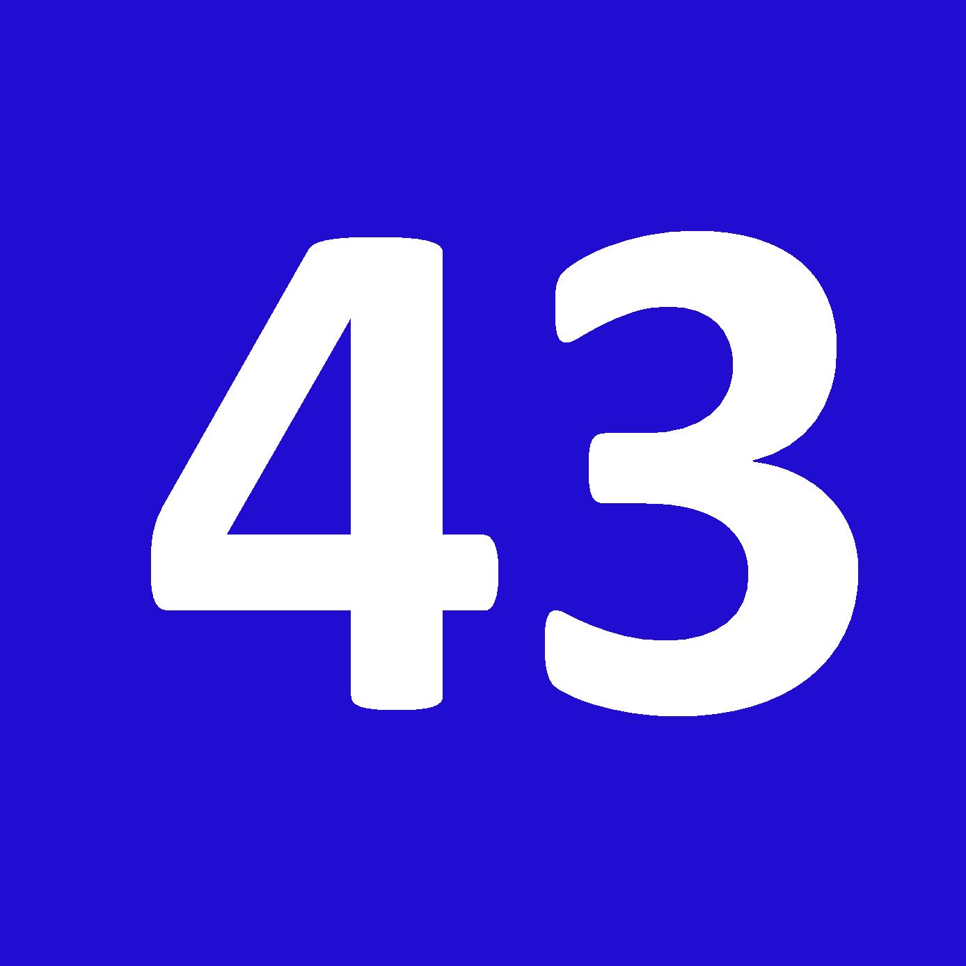Tamanho 43
